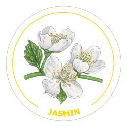 jasmin21x21cm-mørkgul