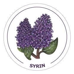 syrin21x21cm